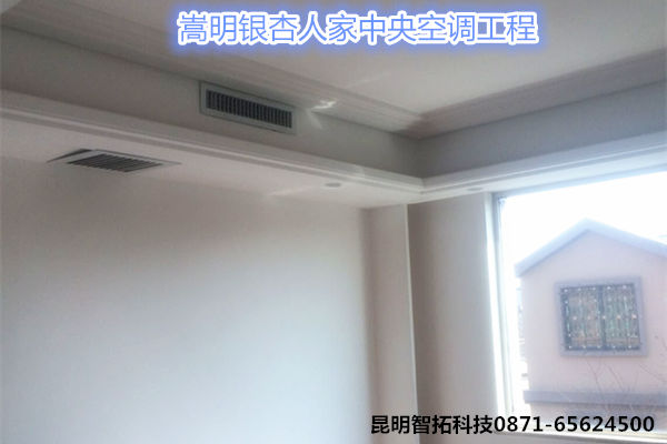 银杏人家别墅中央空调